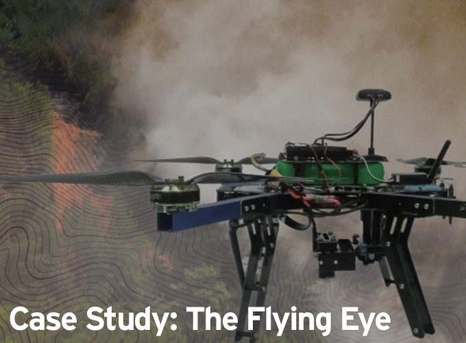 Case Study: The Flying Eye