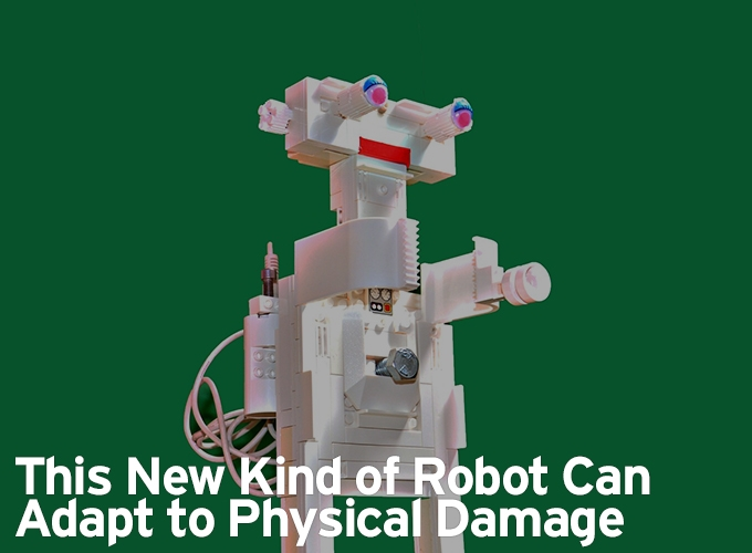 This New Kind of Robot Can Adapt to Physical Damage