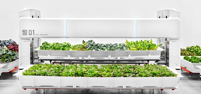 From Robot Farm to Table: Iron Ox Unveils the First Fully Autonomous Indoor Farm