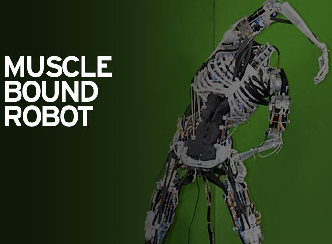 Muscle Bound Robot