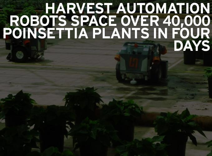 Harvest Automation Robots Space Over 40,000 Poinsettia Plants in Four Days