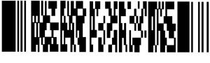 N:\DEPTONLY\MARCOM\ML_Marketing_Lit\White Papers\Laser Imager White Paper\Artwork\Pdf417_2.png